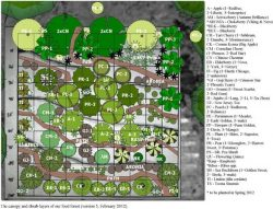 food-forest-map